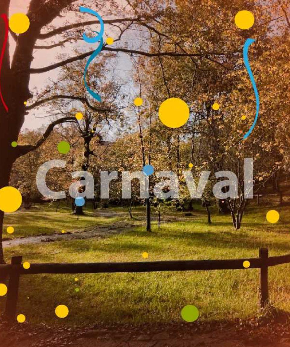Carvanal no Parque Cerdeira